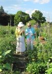 Gardening discussion