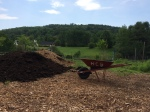 Compost and wheelbarrow